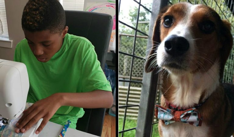 Making bow ties for shelter animals, a young boy gets a letter from former President Obama.