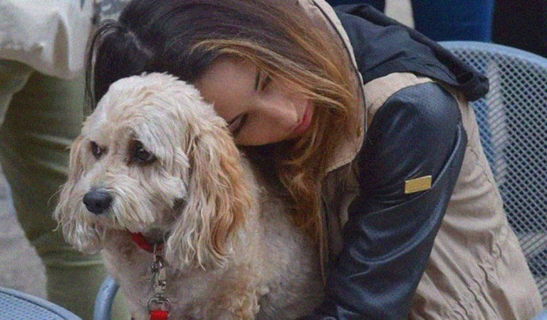 Research study reveals that losing your dog can be as tough as losing a family member
